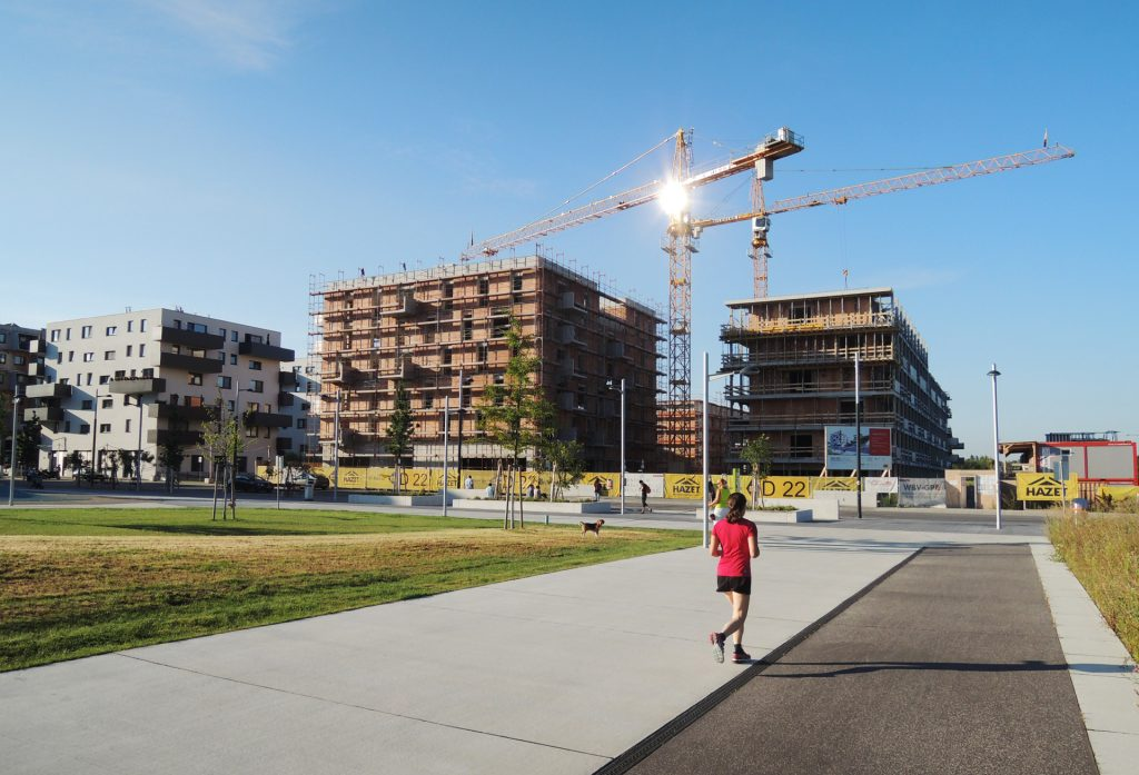 Topping Out in the Seestadt